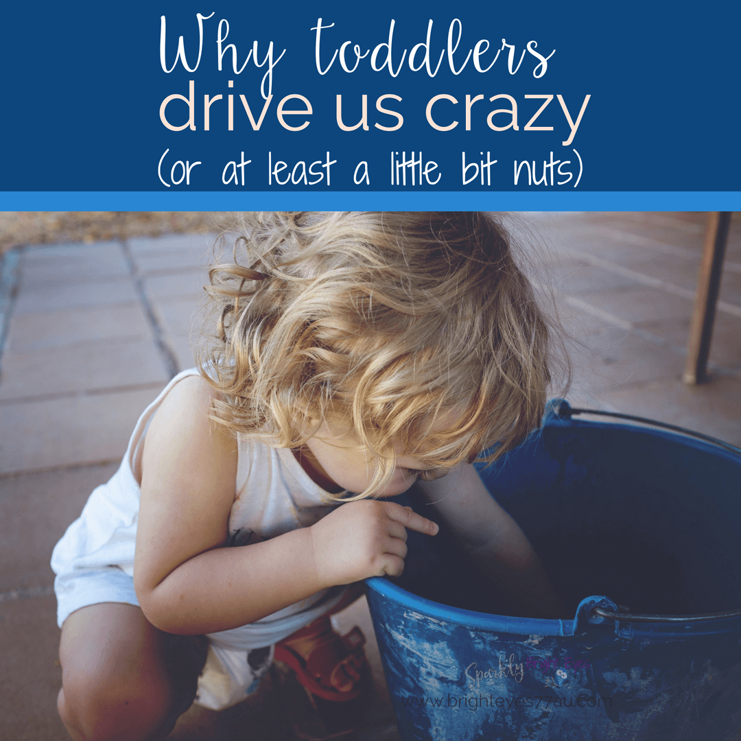 why toddlers drive us crazy- girl toddler peering into a blue bucket